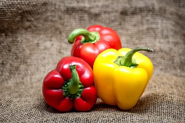 dogs and bell peppers