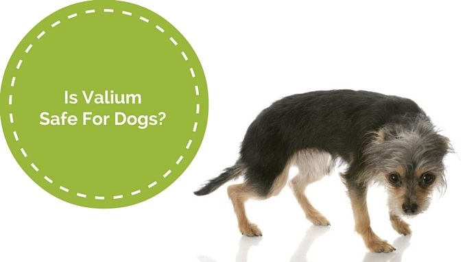 what is diazepam used for valium for dogs