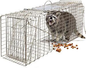 Best Dog Proof Raccoon Traps 1