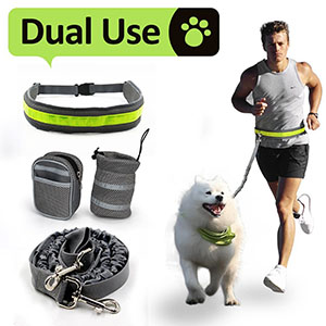 Best Leashes for Hiking with Dogs - Hiking Leashes for Dogs 1