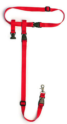 Best Leashes for Hiking with Dogs - Hiking Leashes for Dogs 3