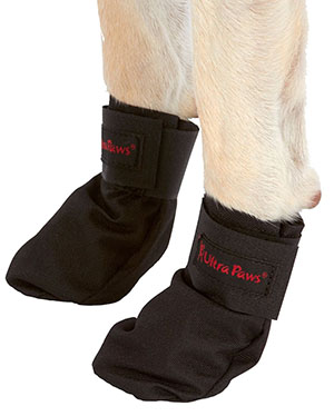 Best Dog Boots for Hunting - Prevent Pad Damage and Hunt Longer 2