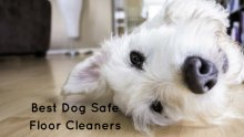 Dog Safe Floor Cleaners For Your Home